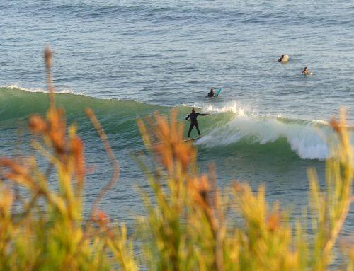 Surfen an der Algarve: Die besten Surfspots in Südportugal