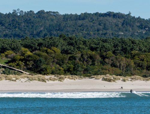 Surfen in Nordportugal: Die besten Surfspots zum Wellenreiten in Porto und im Norden Portugals